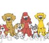 10 raças de cachorros dóceis