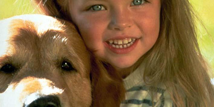 Meu filho quer um cachorro… e agora?