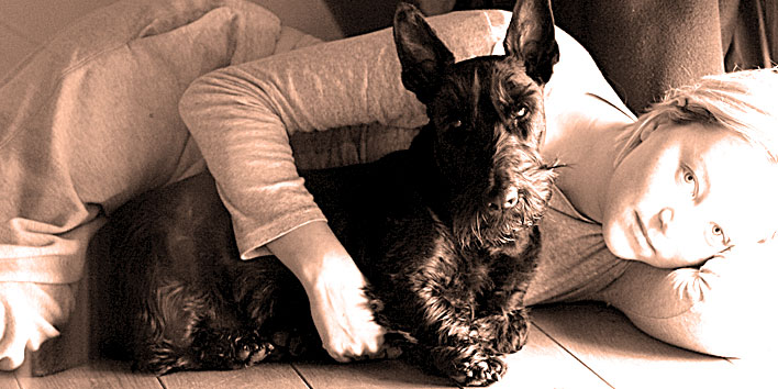 Scottish Terrier - Terrier Escocês