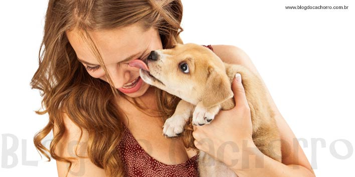 Cachorros têm empatia por pessoas tristes