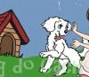 Aonde os cachorros gostam de carinho