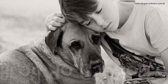 Cachorros reagem ao choro tentando confortar as pessoas.